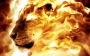 flaming_lion
