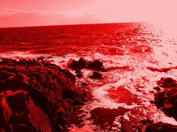sea_of_blood
